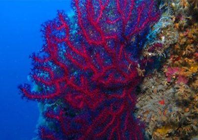 07 - isole Eolie e Taormina