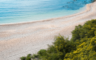 Vacanze Cala Gonone 2020